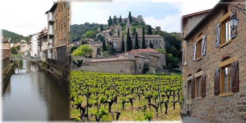 visite_beaujolais_pierre_doree