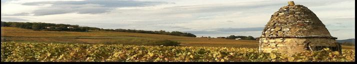 <span>Découvrez le domaine viticole du Beaujolais</span> et les Pierre Dorées